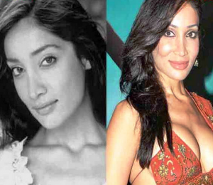 Sofia Hayat Plastic Surgery Before And After Photos