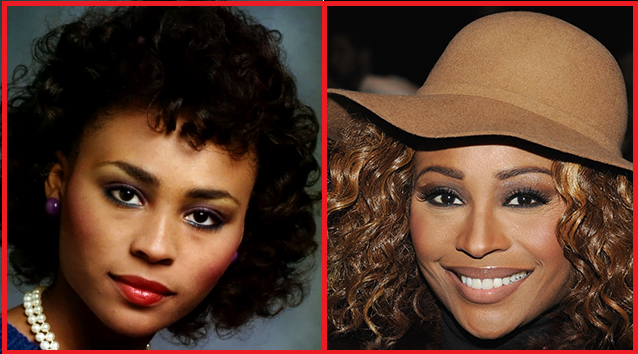 Cynthia Bailey Plastic Surgery before and after photos